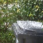 The hail showed up well on the wheelie-bin- it being dustbin day.